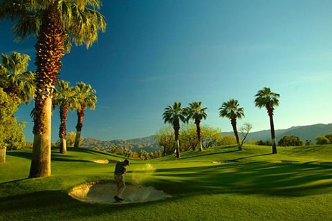 Desert Springs Golf
